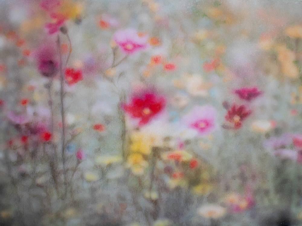 Flower Symphony #8